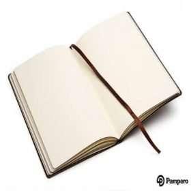 Cuaderno Bioy-Pampero